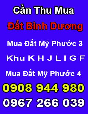 thu_mua_dat_my_phuoc_3